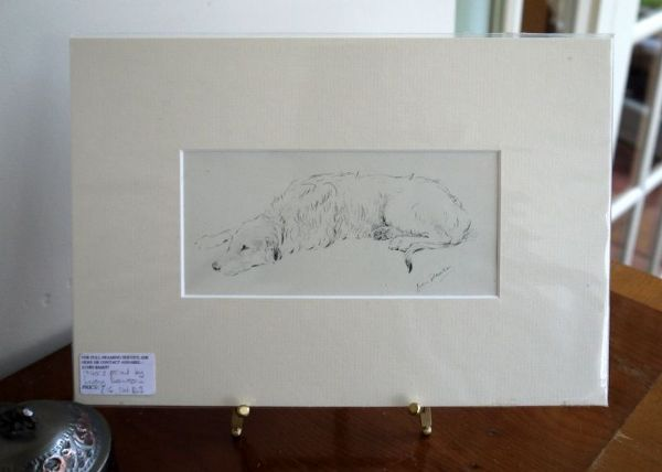 Irish Wolfhound - small pencil sketch - IW D3 -  1940's print by Lucy Dawson